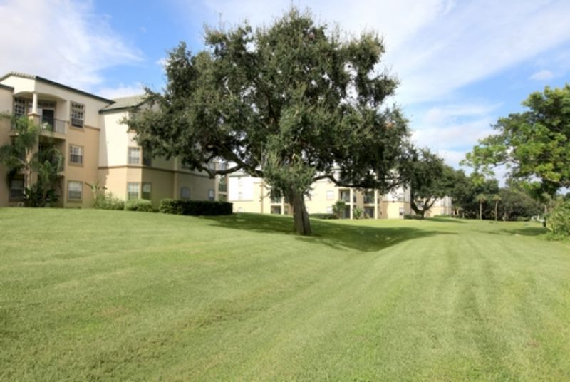 Bayside Arbors Apartments Clearwater Fl