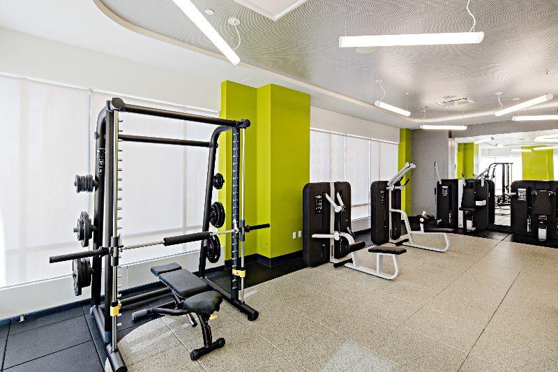 Ava dobro brooklyn see pics avail for Ava apartments new york